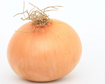 discover typical onion facts